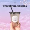 イベント限定kombucha SAKURA♡